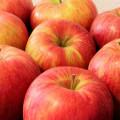 「ふじ」と「サンふじ」って、違う品種のりんごなの?