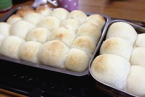 「ちぎりパン」を冷蔵庫発酵で。焼き上がりました♪