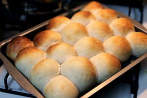 「ちぎりパン」を冷蔵庫発酵で。いい色に焼けないかな~