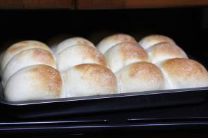 夜こねて朝焼く「ちぎりパン」 今回はこんな感じ。